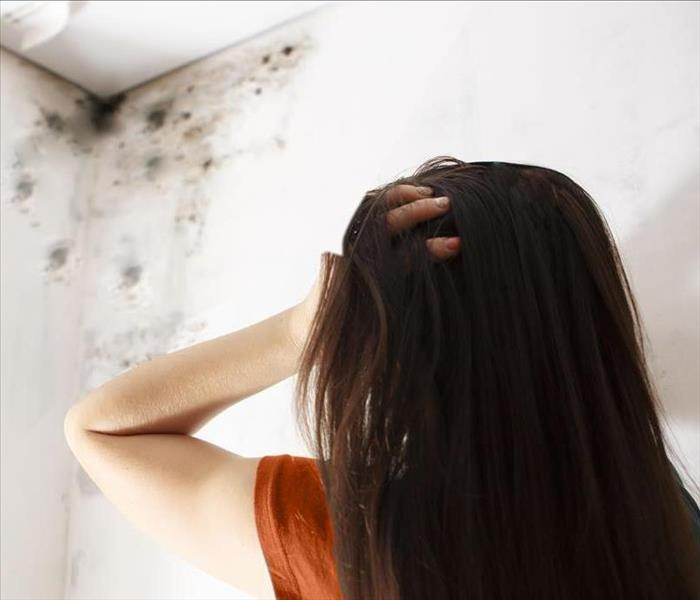 Mold Remediation SERVPRO Has The Right Methods To Restore Your Tallassee Home Of Mold