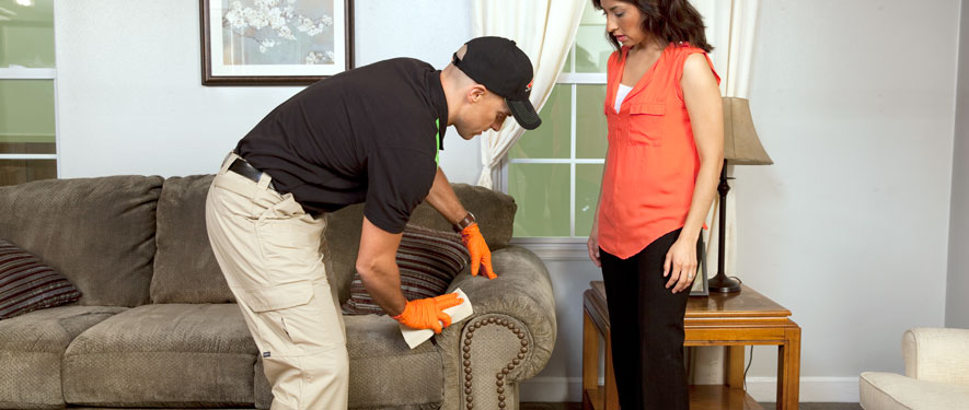 Prattville, AL carpet upholstery cleaning